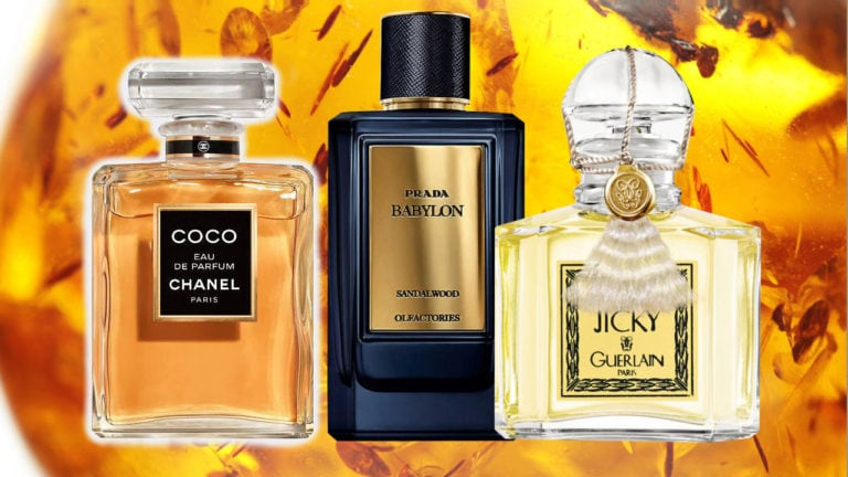 Best Perfumes With Sandalwood And Amber Main Image