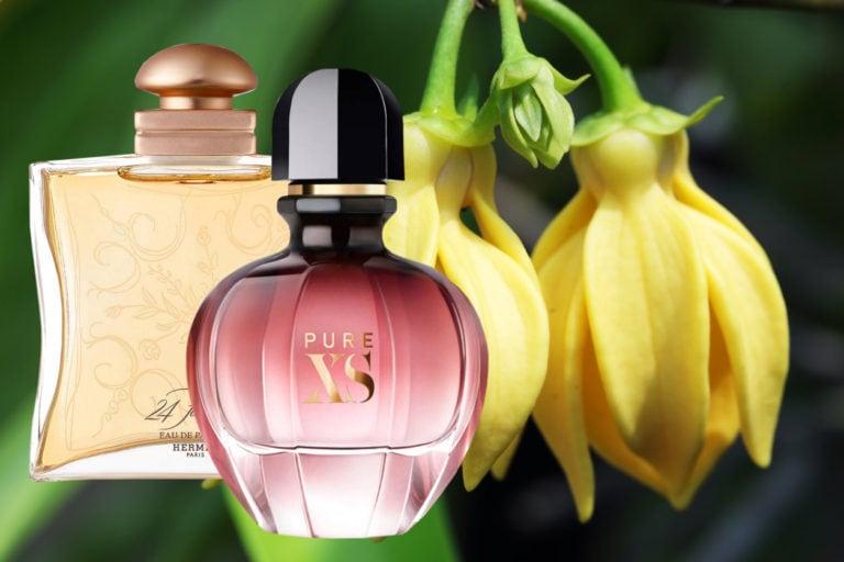 best Perfumes With Ylang Ylang