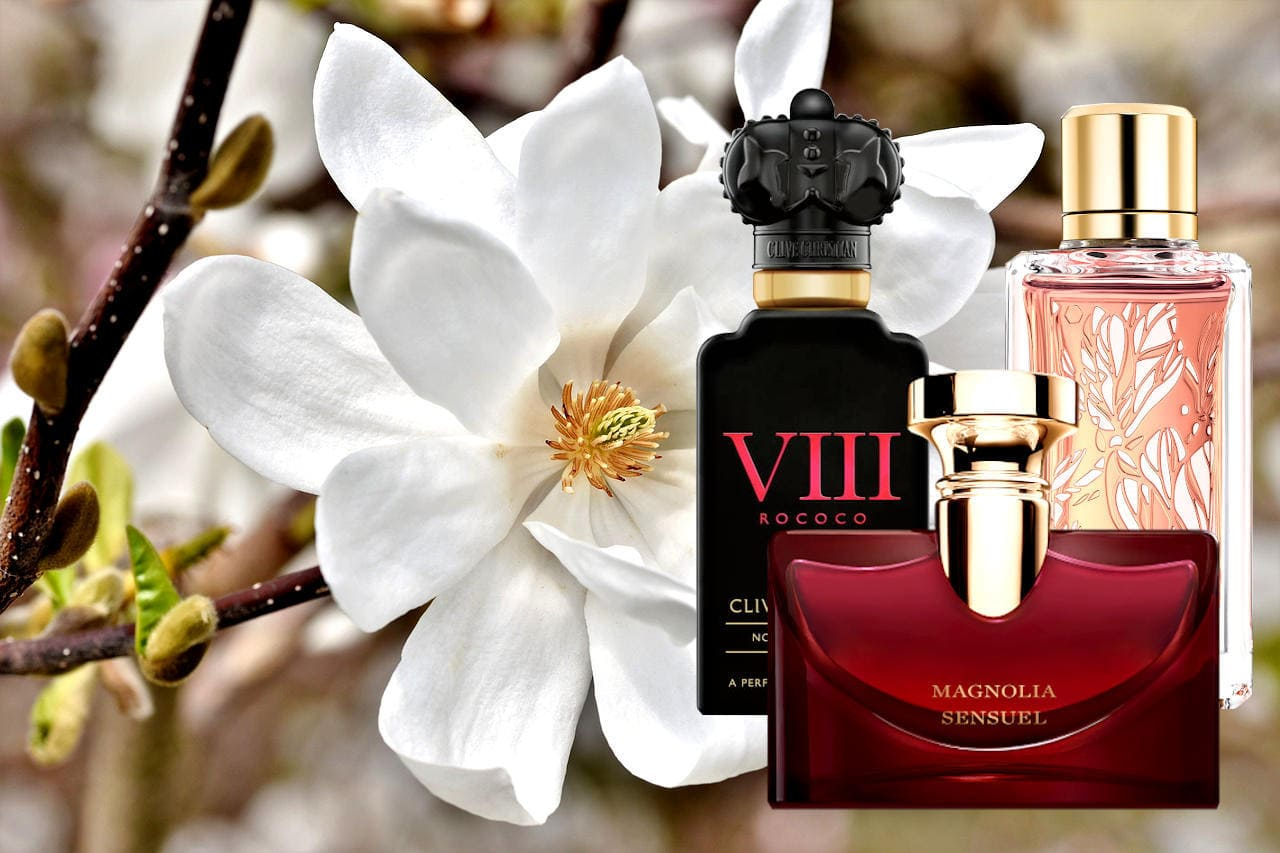 Best Perfumes With Magnolia