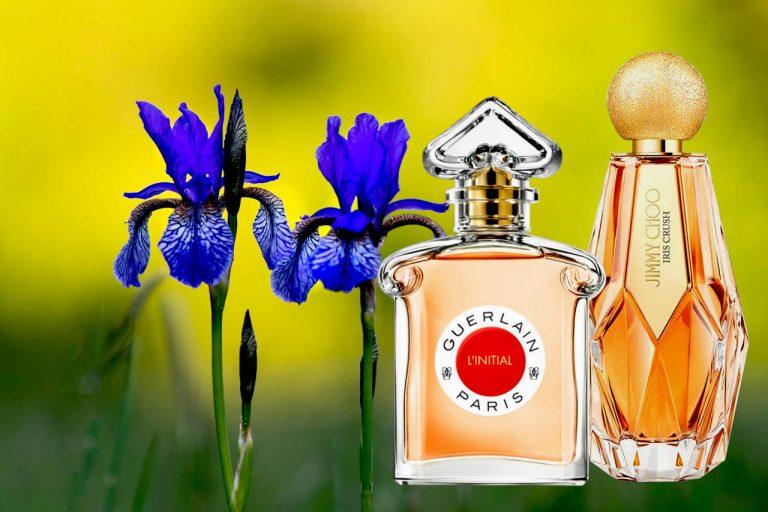 Striking Perfumes With Iris For Women